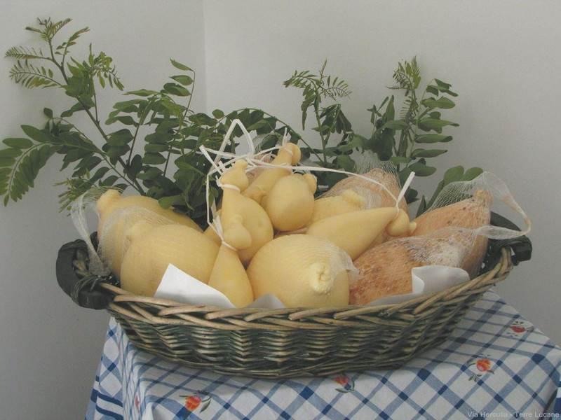 Azienda Agricola Ciliberti