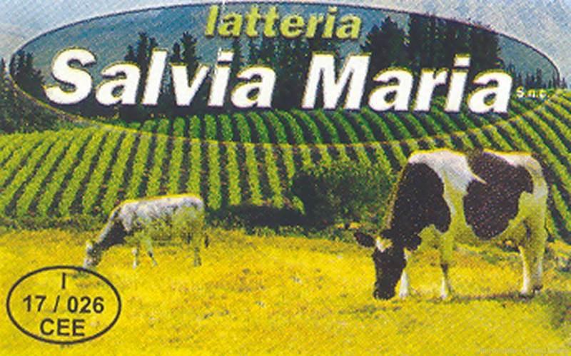 Latteria Salvia Maria