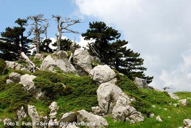 I percorsi di Rete Natura 2000
