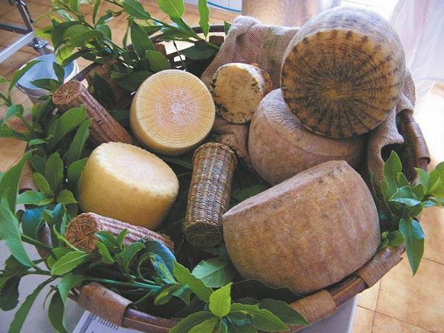 Azienda Agricola De Palma Vincenzo