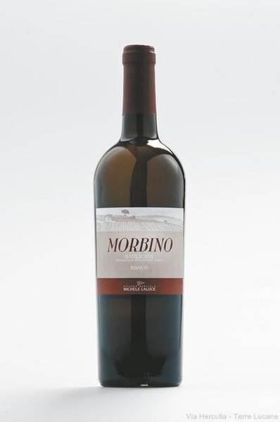 Morbino