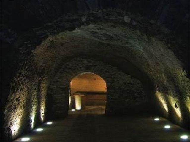 Azienda Vinicola Carbone