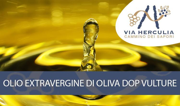 Olio Extravergine di Oliva DOP Vulture