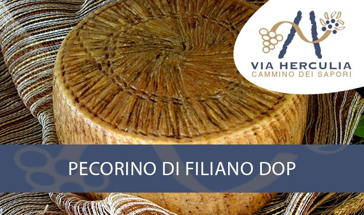 Pecorino di Filiano DOP