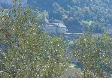 Azienda Agricola Gagliardi Rosetta
