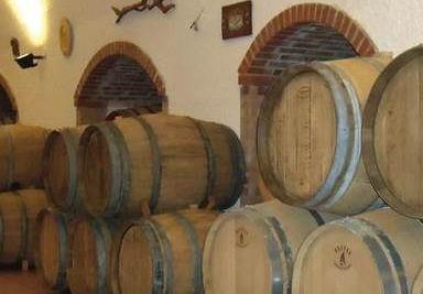 Azienda Agricola Vitivinicola Vini Cervino