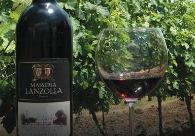 Società Agricola Masseria Lanzolla