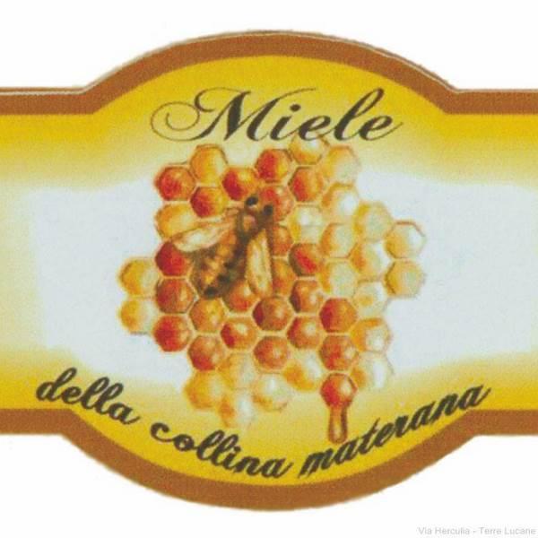 Azienda Agricola Tursone Michele