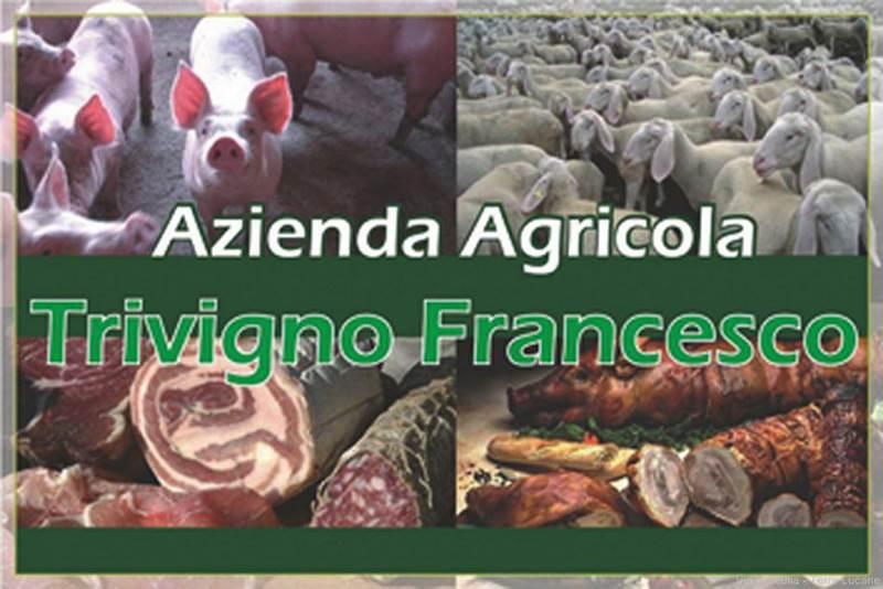 Azienda Agricola Trivigno Francesco